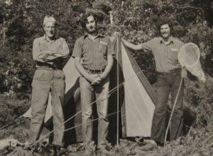 Trzech Fiedlerów